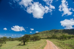 serengeti-north-03