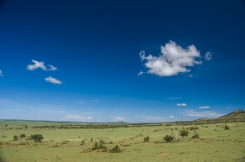 serengeti-north-05