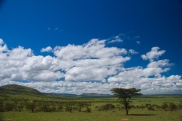 serengeti-north-06