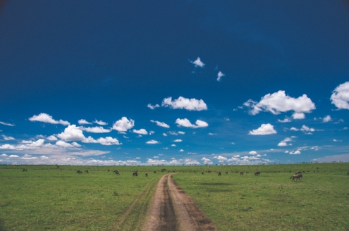serengeti-north-19