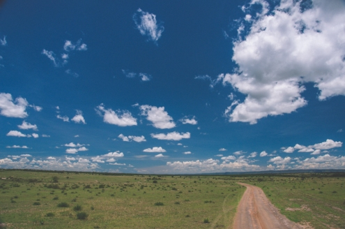 serengeti-north-23