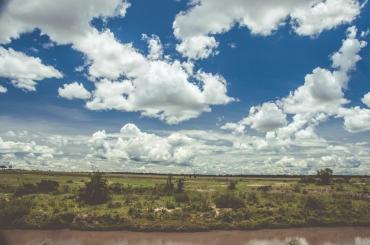 serengeti-migration-27