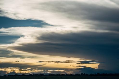 serengeti-migration-57