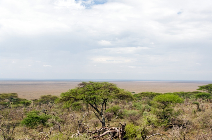 serengeti-south-001