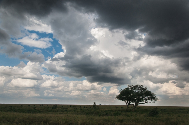 serengeti-south-038