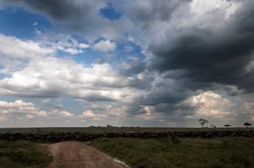 serengeti-south-040