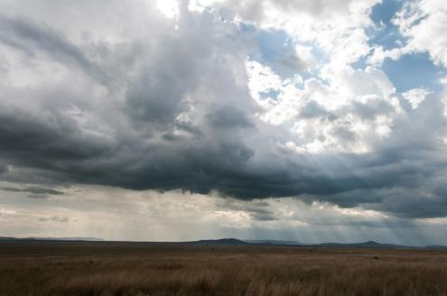 serengeti-south-041
