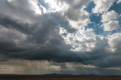serengeti-south-042