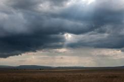 serengeti-south-044