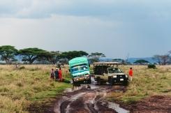 serengeti-south-054