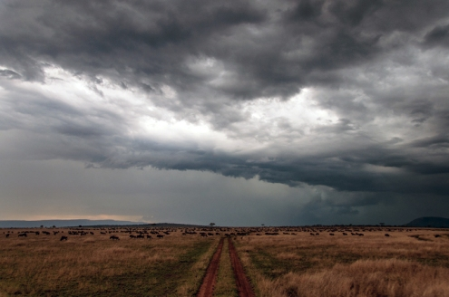 serengeti-south-056