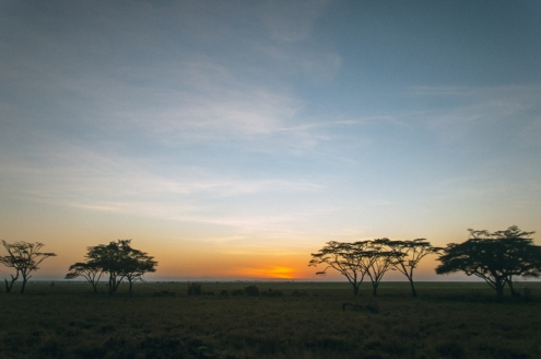 serengeti-south-059