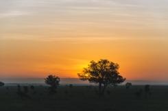 serengeti-south-060
