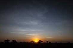 serengeti-south-061