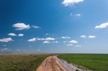 serengeti-south-075
