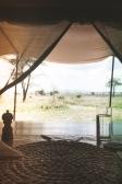 serengeti-south-085