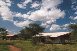 serengeti-south-086