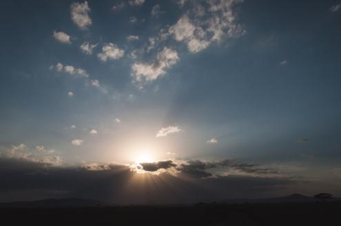 serengeti-south-103