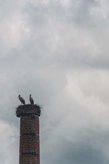 amsterdam2014-034