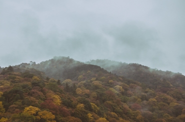 kyoto-arashiyama-16