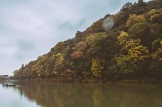 kyoto-arashiyama-29