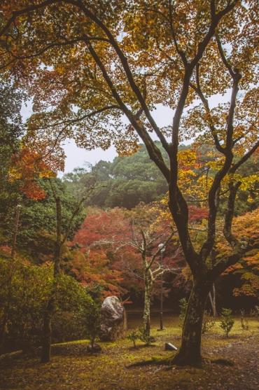 kyoto-arashiyama-38