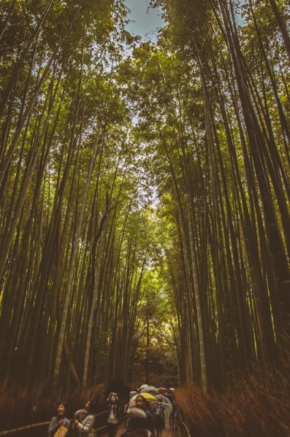 kyoto-arashiyama-49
