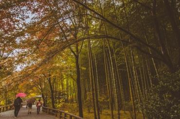 kyoto-arashiyama-52