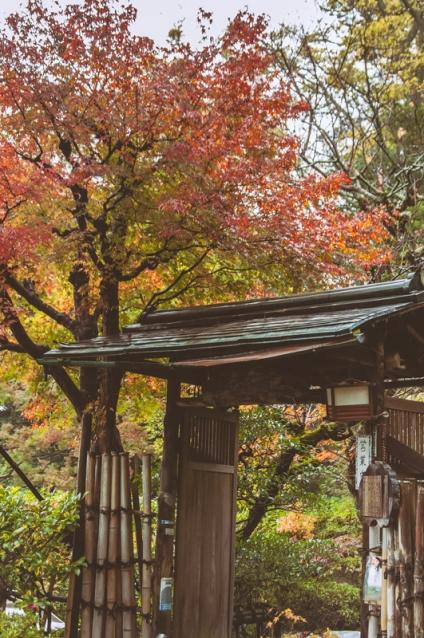 kyoto-kiyomizudera-58