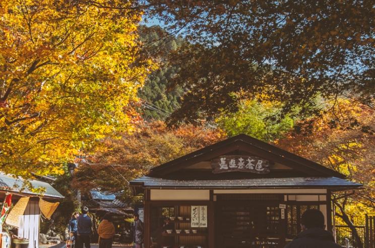 kyoto-ohara-028