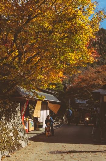 kyoto-ohara-029