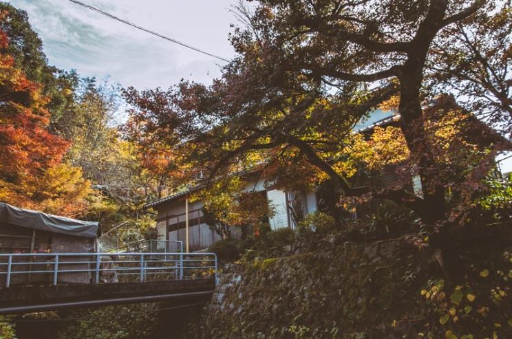 kyoto-ohara-097