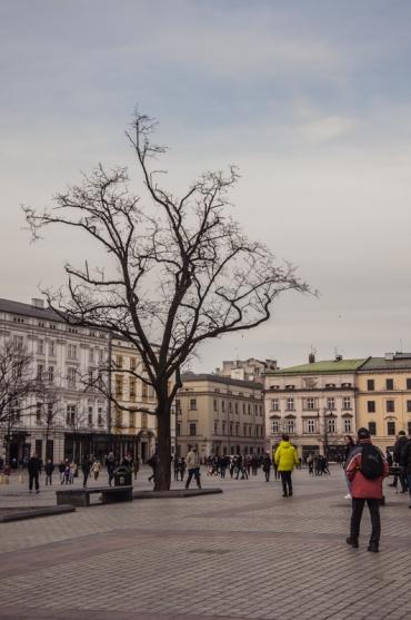 krakow-129