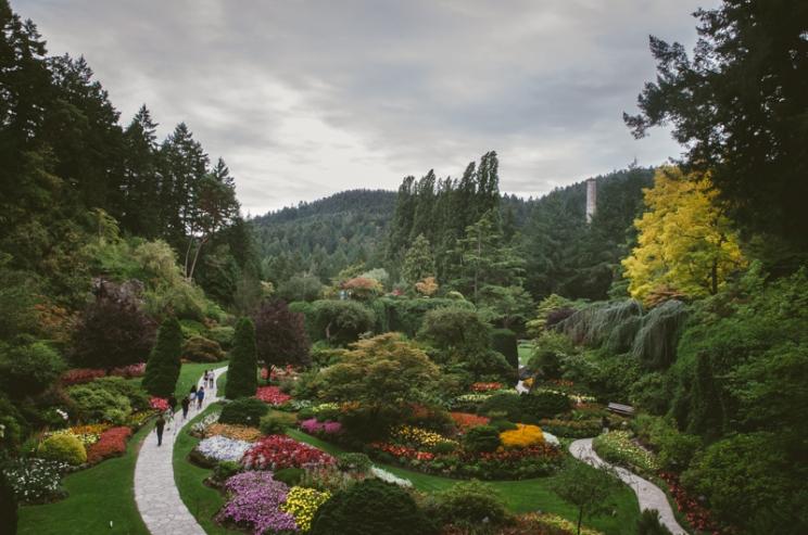 butchart-gardens-08