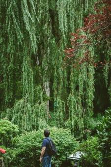butchart-gardens-16