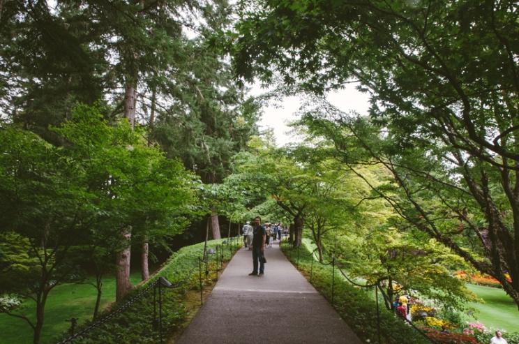 butchart-gardens-23