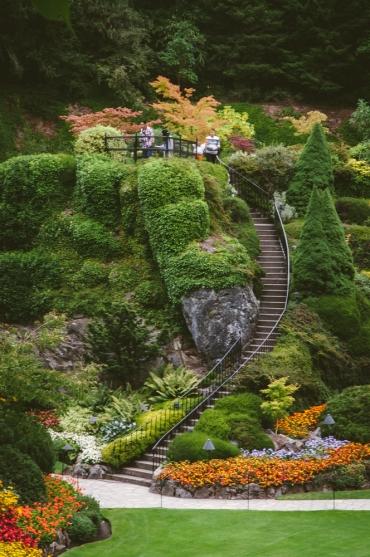 butchart-gardens-26