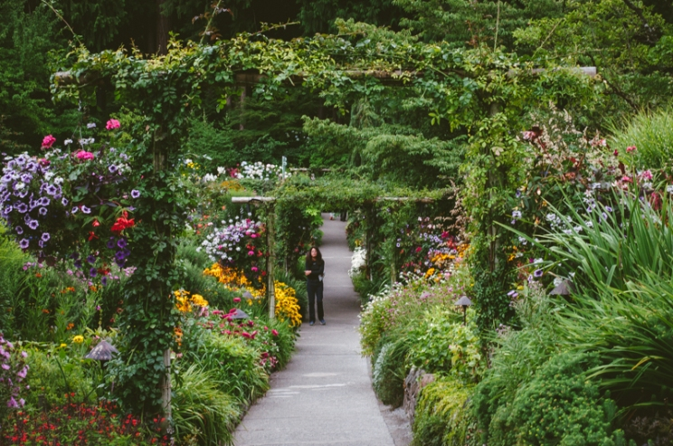butchart-gardens-46