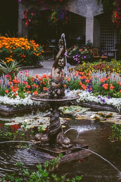 butchart-gardens-65