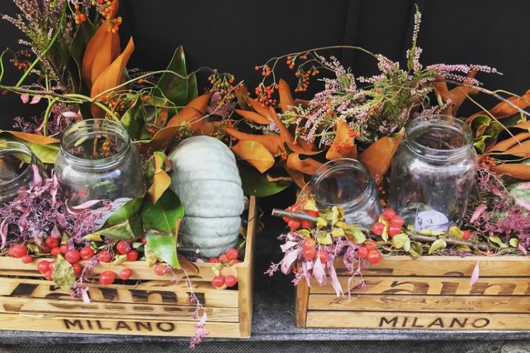 fall-foliage-2016-13