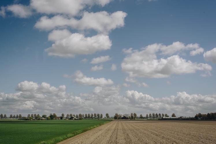 rotterdam-2017-36
