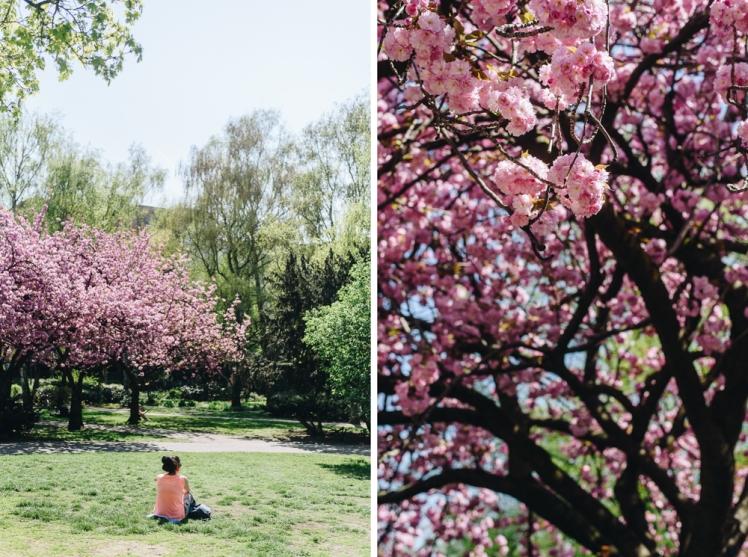 berlin-spring2018-06