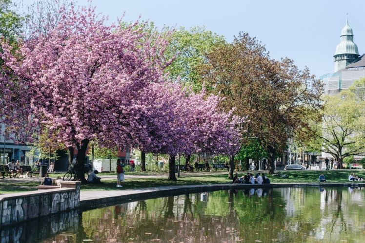 berlin-spring2018-10