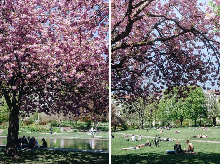 berlin-spring2018-14
