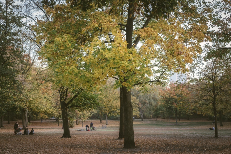 berlin-fall-2018-07