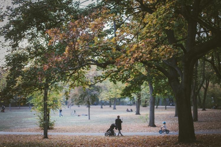 berlin-fall-2018-10