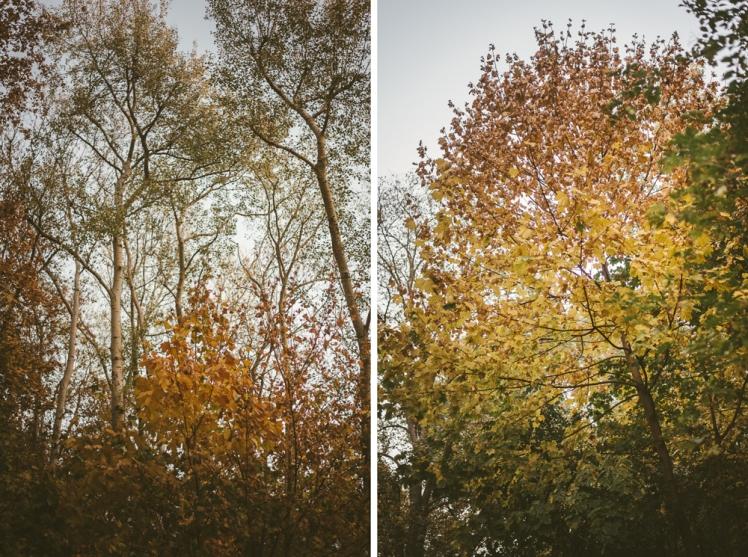 berlin-fall-2018-14