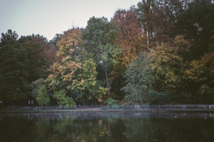 berlin-fall-2018-17