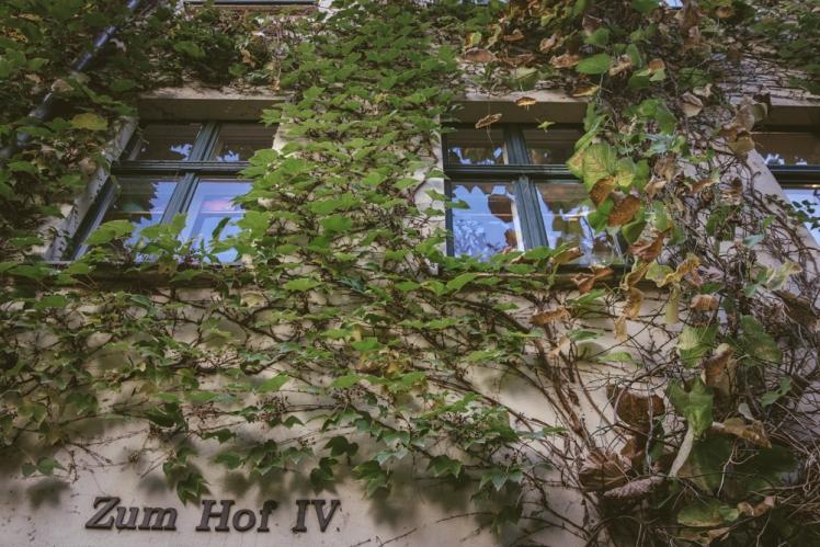 berlin-fall-2018-30