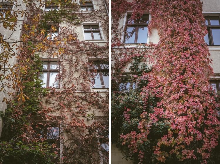 berlin-fall-2018-35